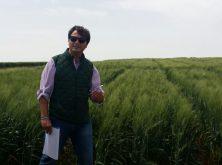 Toda la producción y comercialización de cereales en Valladolid