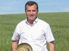 «Destaca la baja calidad panadera de los trigos blandos del norte y centro peninsular»
