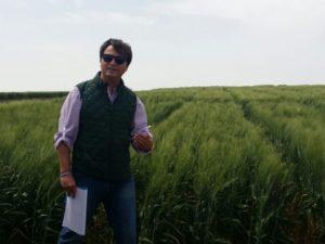 entrevista a Alejandro Castilla investigador IFAPA