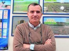 «La crisis sanitaria no va a tener una influencia significativa en el mercado español del cereal»